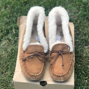 New Ugg Alena Slippers